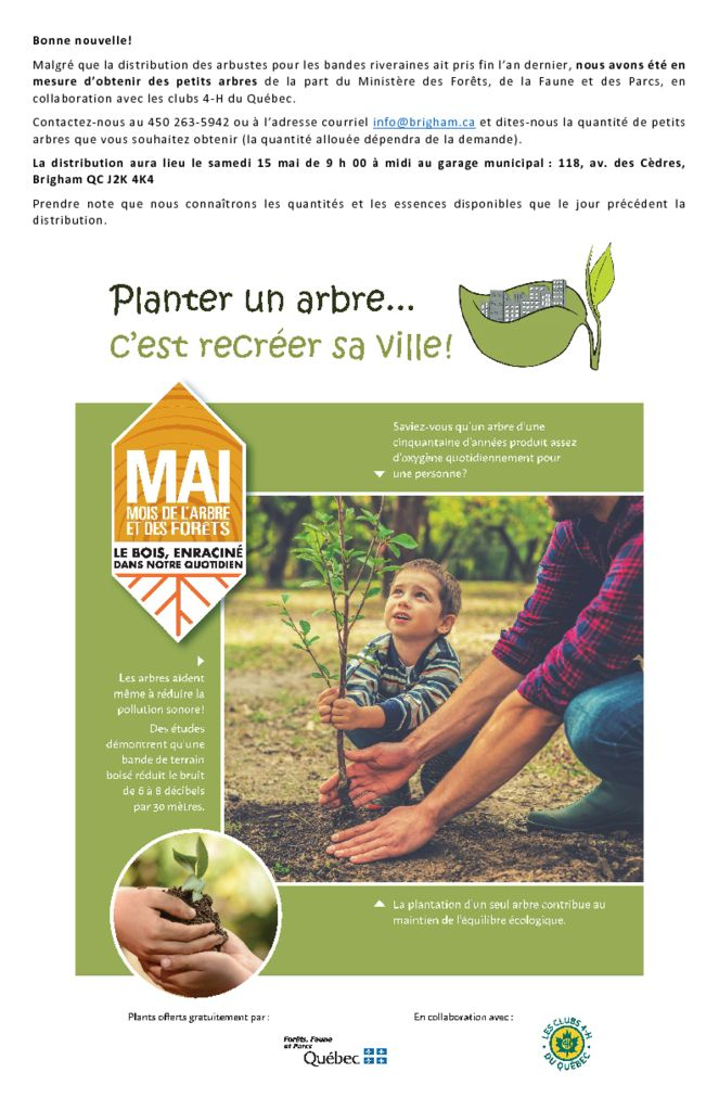 thumbnail of Affiche-Distrtibution.de.petits.arbres-2021