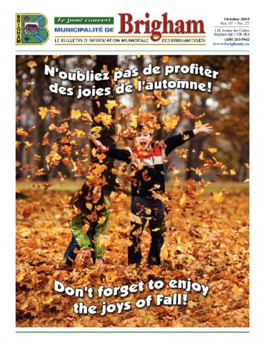 thumbnail of Bulletin Octobre 2015